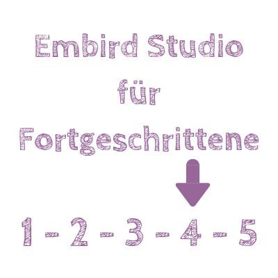 Embird Studio Kurse für Fortgeschrittene